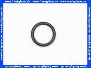 11120518 Sulzer ABS O-Ring zu 43025300