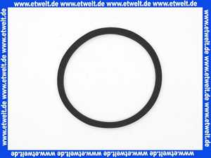 11125009 ABS O-Ring Dichtung 10x150