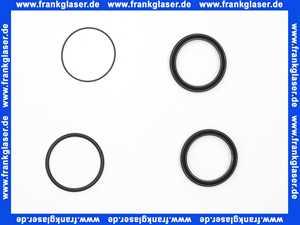 139465 Blanco O- Ring Set