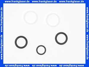 139945 Blanco KSt.-O-Ring Set Auslauf