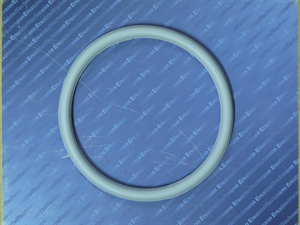3869024 Buderus O-Ring 132x10 f Handloch