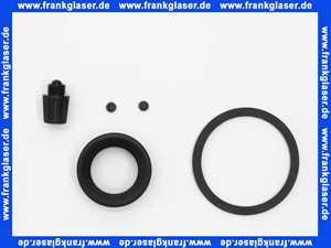 6090818 BWT Dichtungsset Dichtungssatz für Schutzfilter S GSI PN 16 3/4  - 1 1/4
