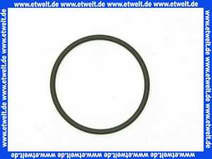 9127590 BWT O-Ring EP70 42,52 x 2,62