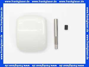 43052SH0 Grohe DAL Kappenhebel Betätigungshebel weiss für Aufputz Urinal- Druckspüler