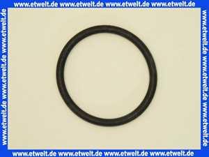 590169 Dallmer D-Ring