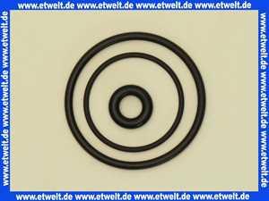 2402910  Dichtungsringe-Satz Viessmann 7008431
