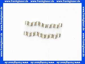 Feinsicherung flink  2 A (5x20mm)     10 Stück