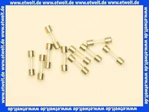 Feinsicherung flink  6,3 A (5x20mm)     10 Stück