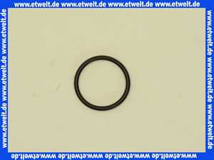 0599900M Grohe O-Ring 1 Stück