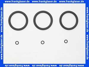 GB 100001 Gruenbeck Dichtungssatz f.Feinfilter FS 1