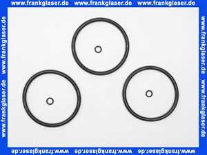 1 Grünbeck Dichtungssatz für Geno Feinfilter FS 1 1/4 - 2 100002