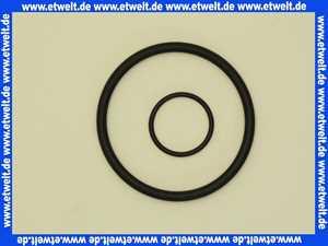 1 Grünbeck Dichtungssatz zu Kombi Wasserfilter Typ GB und GBS 100099