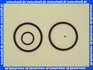 1 Grünbeck Dichtungssatz für Geno Feinfilter S 3/4 - 1 101001