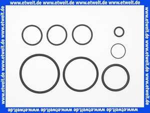 1 Grünbeck Dichtungssatz zu Kombirückspülfilter Typ Geno Jet / Astro 108614