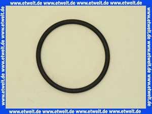 87000113 Grünbeck O-Ring 68x5