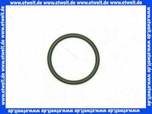 87001741 Gruenbeck O-Ring 26,64