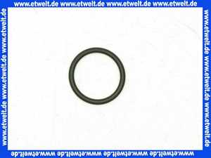 92602000 Hans Grohe O-Ring Thermostat DN15