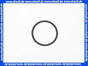 92634000 Hans Grohe O-Ring Thermostat DN20