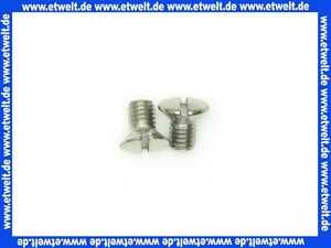 96069000 Hans Grohe Linsensenkschraube M 5x8 poliert