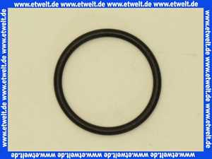 98051000 Hans Grohe O-Ring 32x3