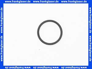 98137000 Hans Grohe O-Ring 17x1,5mm