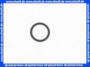 98189000 Hans Grohe O-Ring 14x2,5