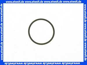 98193000 Hans Grohe O-Ring 32x2mm
