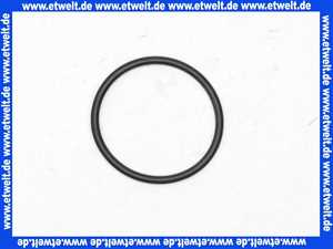 98212000 Hans Grohe O-Ring Dichtung 41x2mm