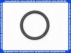 98435000 Hans Grohe O-Ring Dichtung 35x3mm