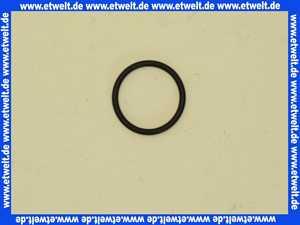 59905053 O-Ring HANSA 25x2,5