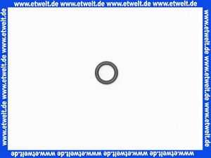 59905101 Hansa O-Ring