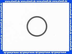 59910693 Hansa O-Ring d: 23,00 X d: 1,78