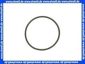 59913975 Hansa O-Ring d: 34,00 x d: 1,50