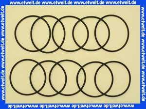 0900747 Honeywell O-Ringsatz