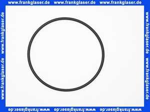 0900748 Honeywell O-Ring für Hauswasserstation HS 10 1 Stück