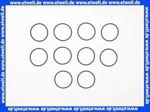 0901499 Honeywell O-Ring 10 Stück Dichtung zu D06F/FF + FK06 3/4 - 11/4 Zoll