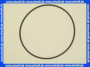 10886 Jung O-Ring Dichtung für Behälterpumpe UC an Hebeanlage Compli 400
