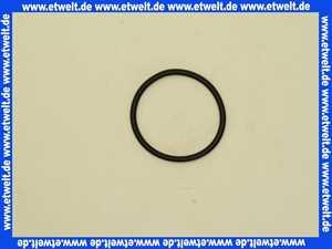 21112 Jung O-Ring