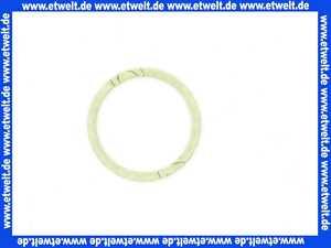 87001030050 Junkers Dichtscheibe (1 Stück)