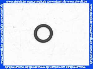 87102050760 Junkers O-Ring (1 Stück)