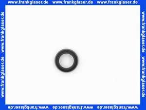 87167713250 Junkers Dichtung 1 Stück