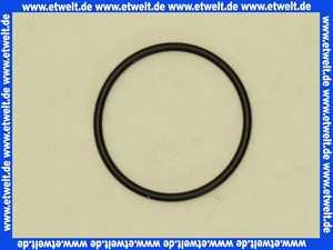 925323 Kludi O-Ring