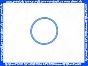 78108094 Neoperl Dichtring blau zu CACHE STD Strahlregler / 20 x 1.5 mm