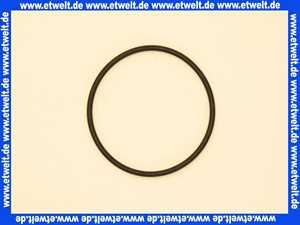 Stiebel Eltron 166060 O-RING 63X3