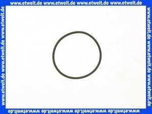135287 Viega O-Ring