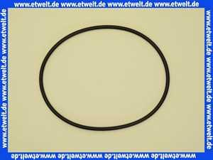 2010300 Wilo O-Ring ID 107,54x3,53 VP