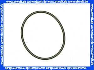2049131 Wilo O-Ring