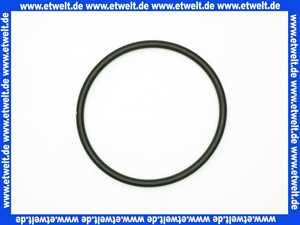 2119963 Wilo O-Ring