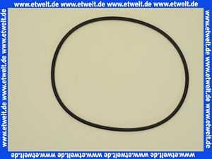 4032285 Wilo O-Ring