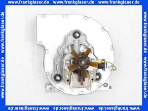 2100007 Wolf Abgasventilator für GG-2-18/24